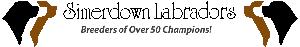Simerdown Labradors